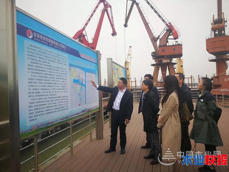 2018年张家港口岸木材进口量约520万立方米
